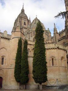 Cathedral (Salamanca) (1)