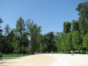 Parco Sempione01