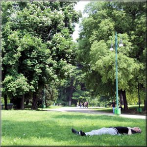 Parco Sempione04