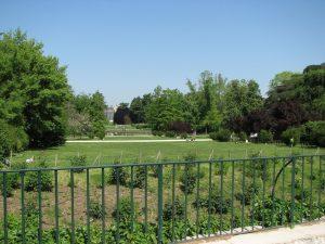 Parco Sempione06