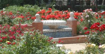 Rosaleda de Casa de Campo