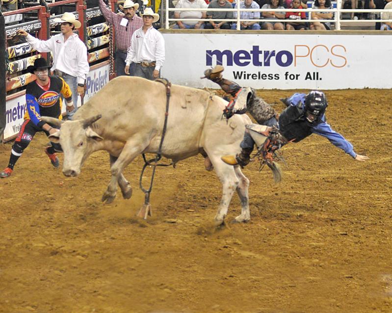 Texas Y Sus Famosos Rodeos Sitiosturisticos Com