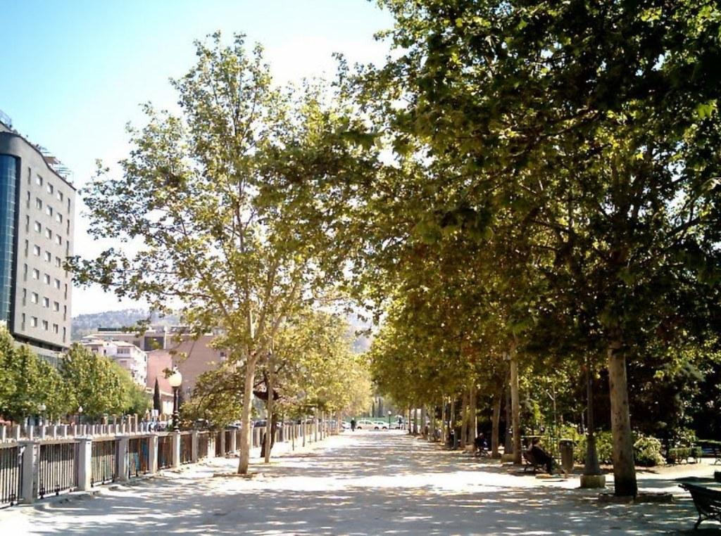 Jardines del viol n for Jardines venecia