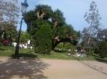 Parco della Cittadella (1)