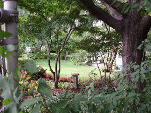 Jardín Botánico de Queens (Queens Botanical Garden)